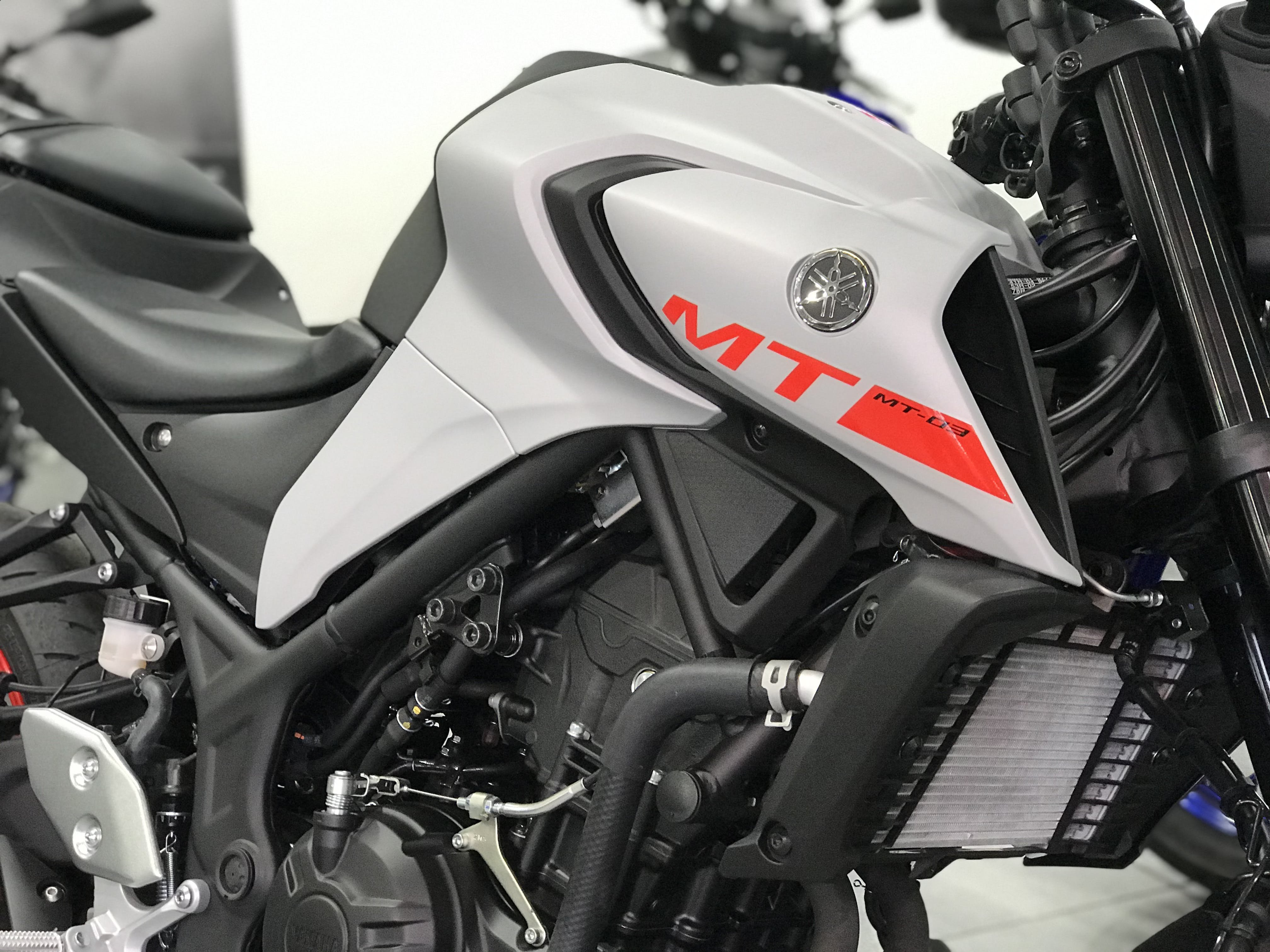 A close up of the Yamaha MT-03 tank in Grey
